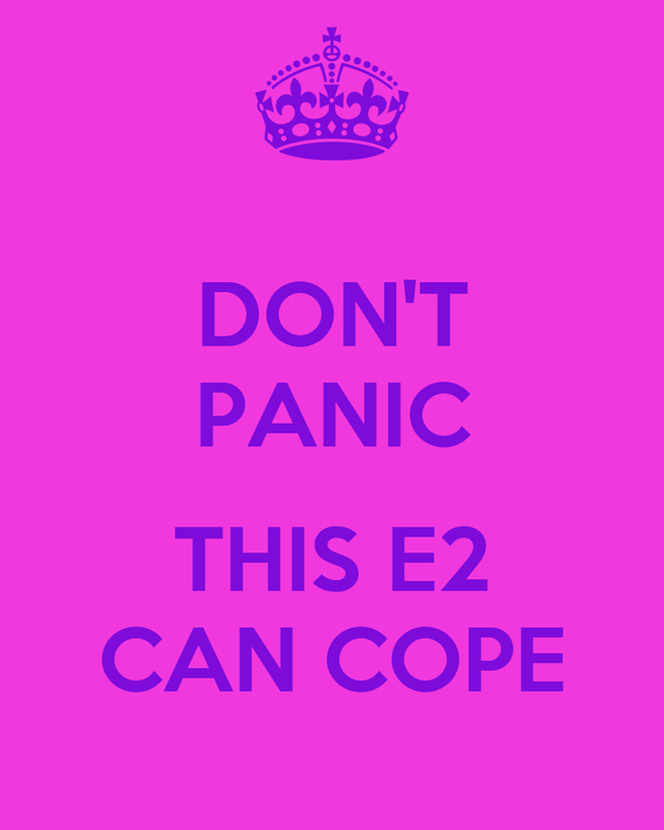 DON'T PANIC  THIS E2 CAN COPE