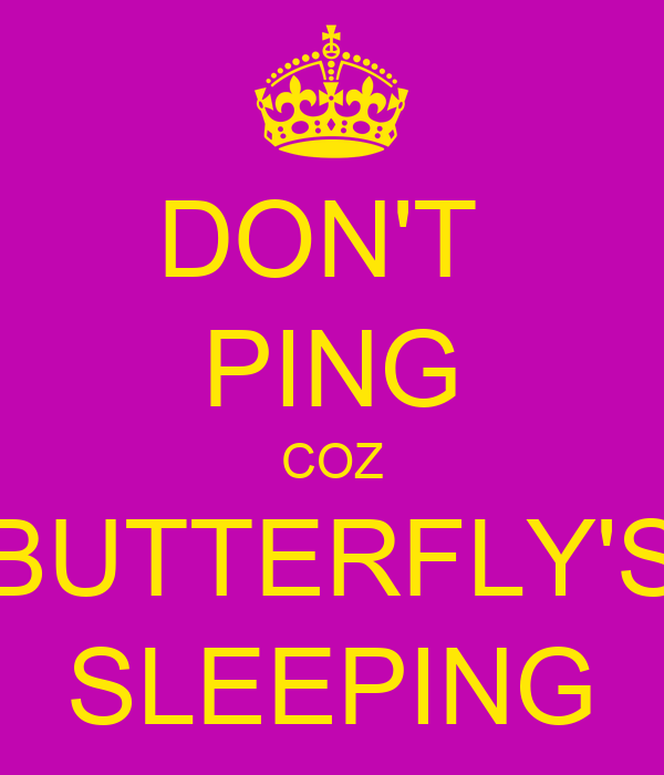 DON'T  PING COZ BUTTERFLY'S SLEEPING