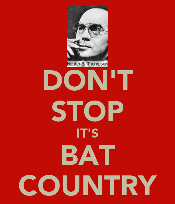 DON'T STOP IT'S BAT COUNTRY