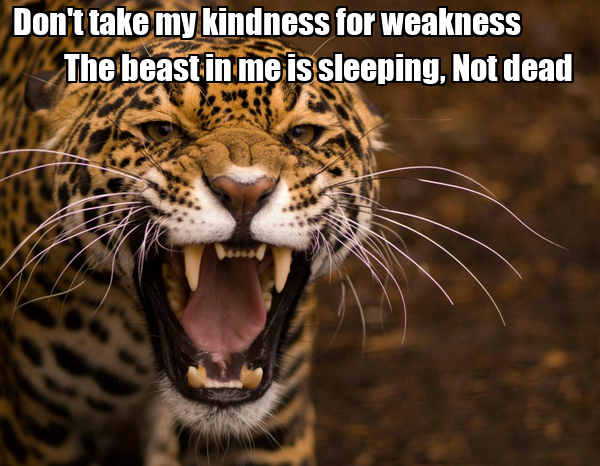 Don't take my kindness for weakness                  The beast in me is sleeping, Not