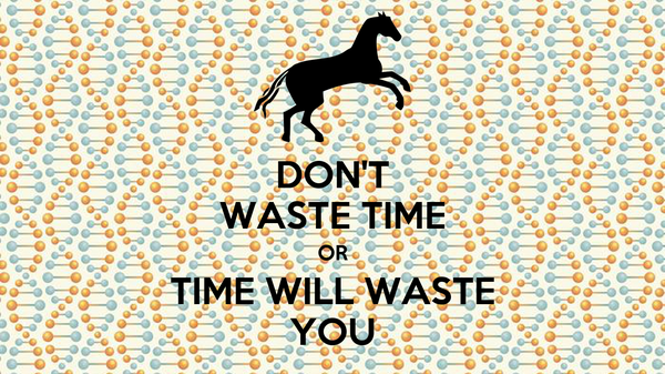 DON'T WASTE TIME OR TIME WILL WASTE YOU