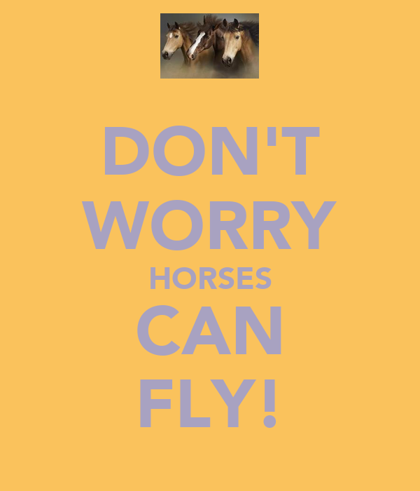 DON'T WORRY HORSES CAN FLY!