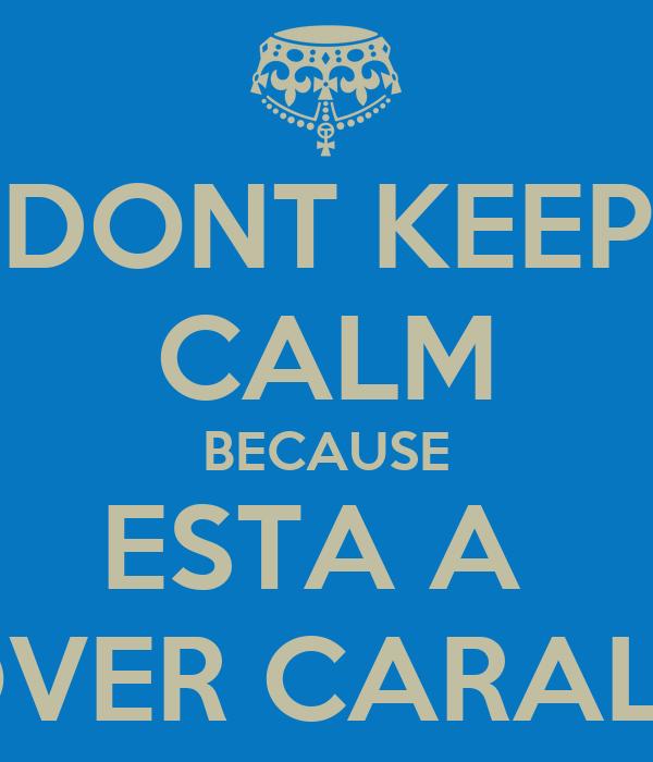 DONT KEEP CALM BECAUSE ESTA A  CHOVER CARALHO !