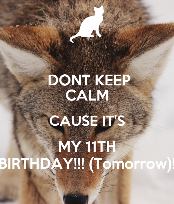 DONT KEEP CALM CAUSE IT'S MY 11TH BIRTHDAY!!! (Tomorrow)!