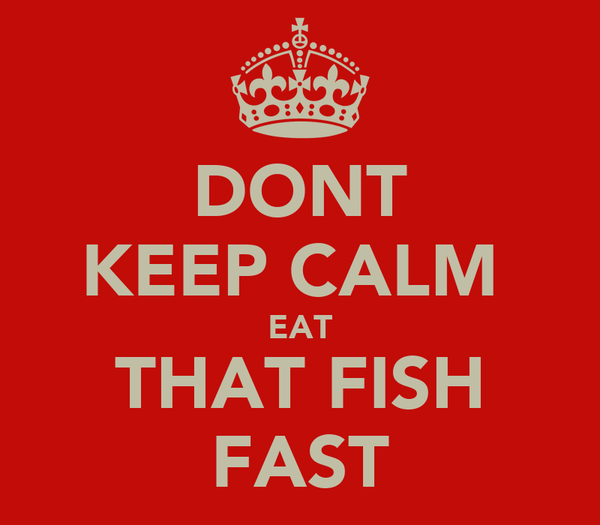 DONT KEEP CALM  EAT THAT FISH FAST