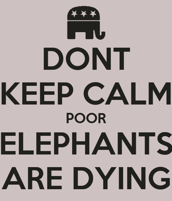 DONT KEEP CALM POOR ELEPHANTS ARE DYING