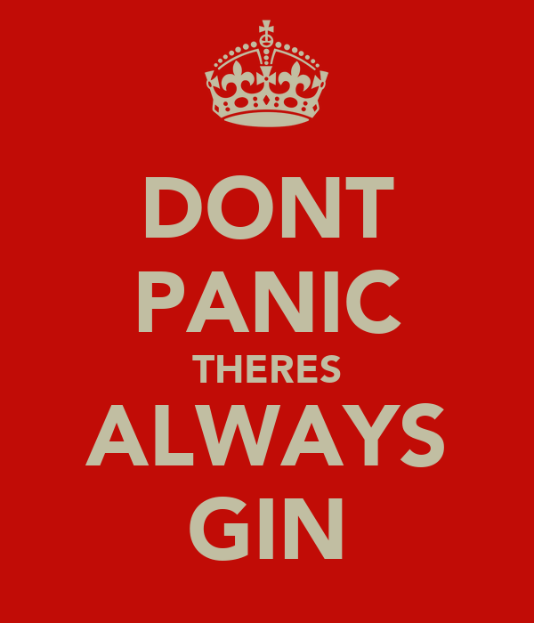 DONT PANIC THERES ALWAYS GIN