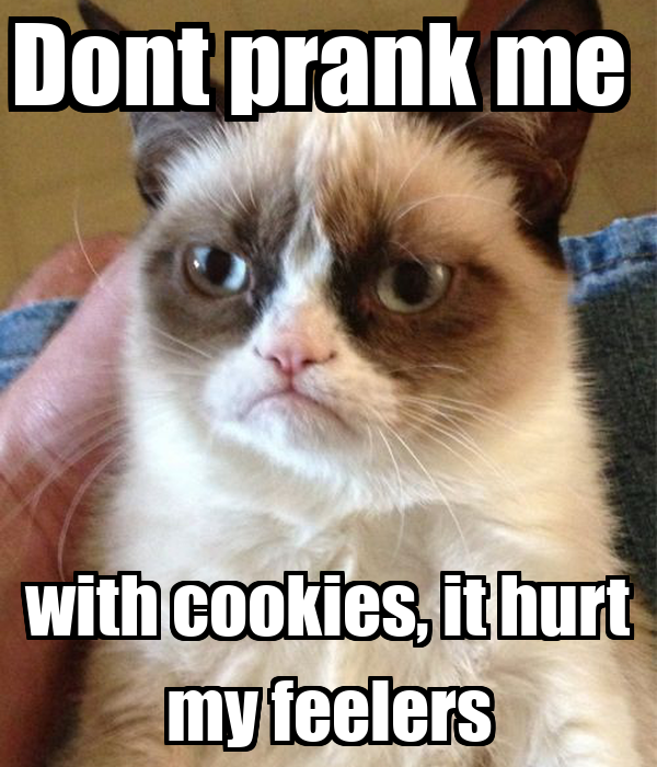 Dont prank me  with cookies, it hurt my feelers