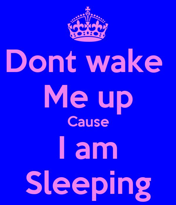 Dont wake  Me up Cause I am Sleeping