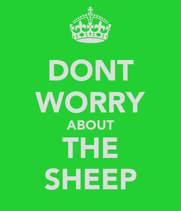 DONT WORRY ABOUT THE SHEEP