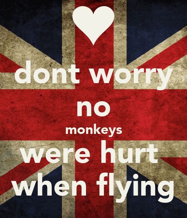 dont worry no monkeys were hurt  when flying