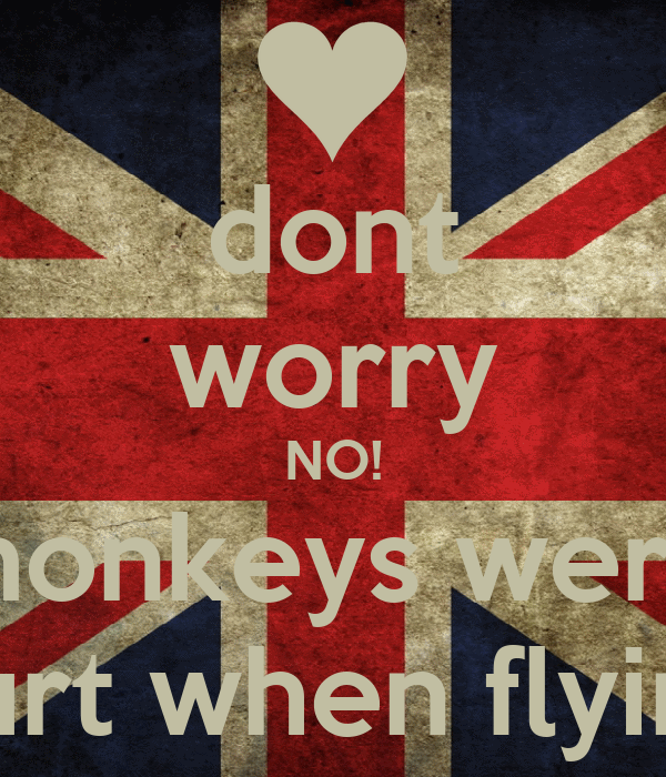 dont worry NO! monkeys were hurt when flying