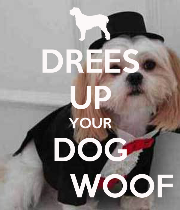 DREES UP YOUR DOG        WOOF