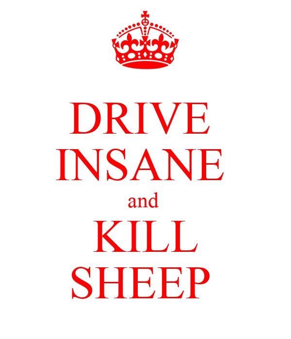 DRIVE  INSANE  and  KILL SHEEP