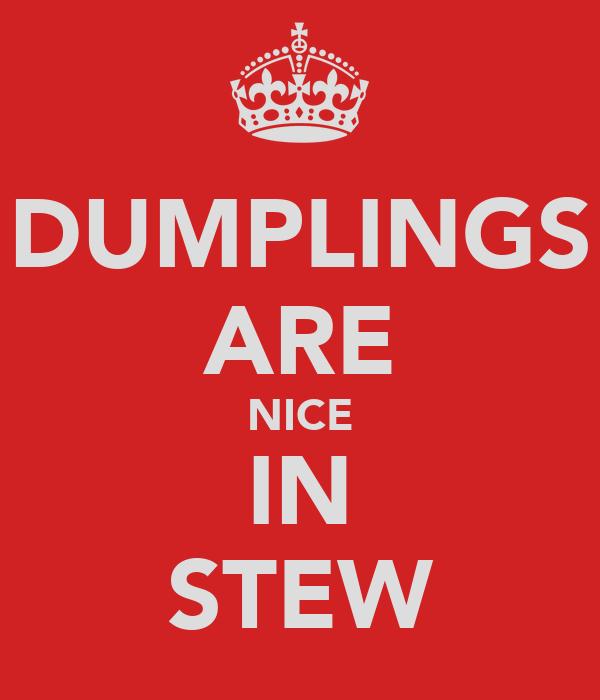 DUMPLINGS ARE NICE IN STEW