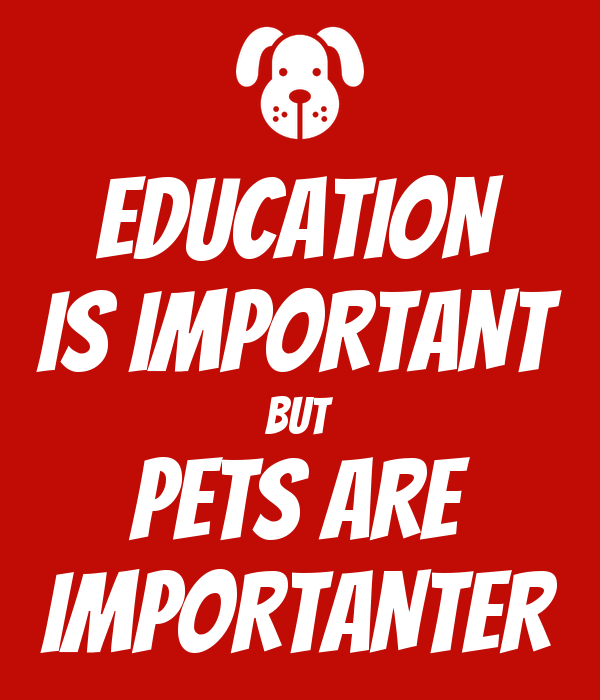 EDUCATION IS IMPORTANT BUT PETS ARE IMPORTANTER