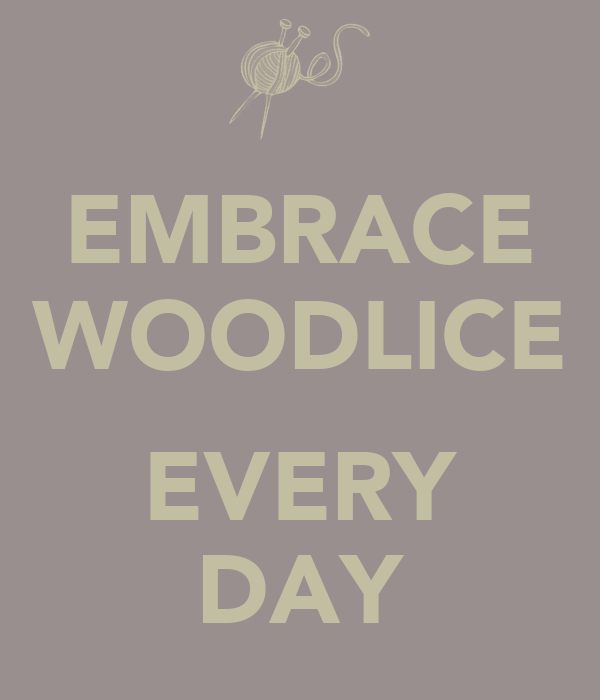 EMBRACE WOODLICE  EVERY DAY