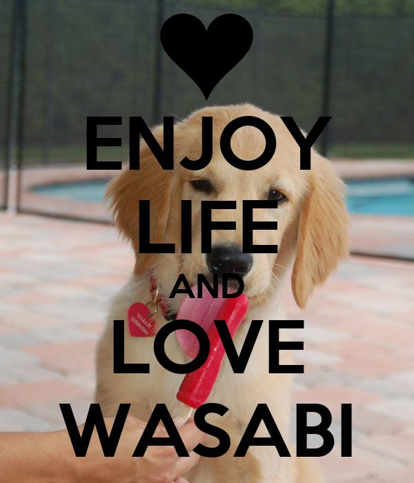 ENJOY LIFE AND LOVE WASABI
