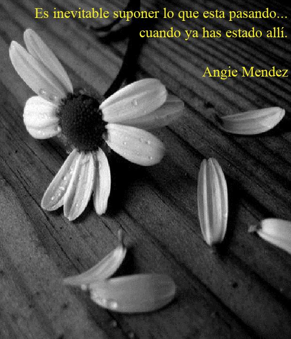 Es inevitable suponer lo que esta pasando... cuando ya has estado allí.  Angie Mendez