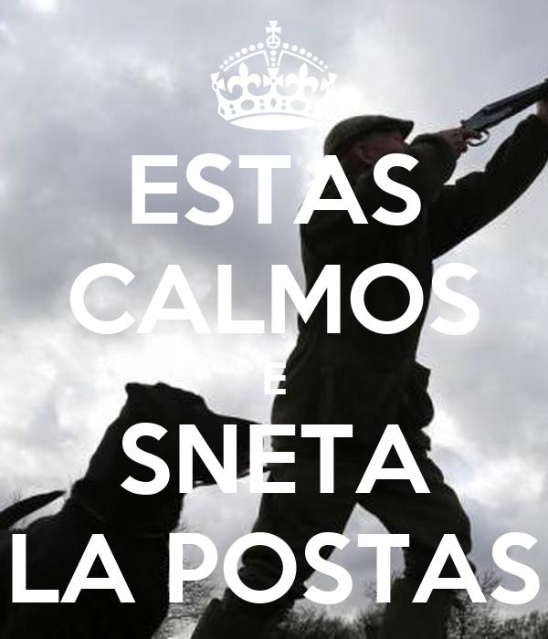 ESTAS CALMOS E SNETA LA POSTAS