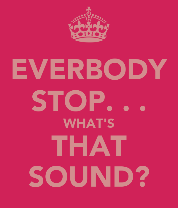 EVERBODY STOP. . . WHAT'S THAT SOUND?