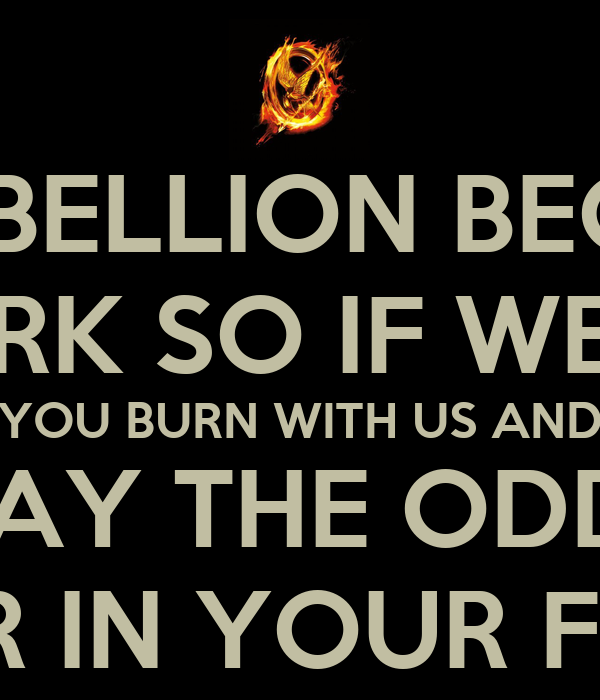 EVERY REBELLION BEGINS WITH A SPARK SO IF WE BURN YOU BURN WITH US AND MAY THE ODDS BE EVER IN YOUR FAVOUR