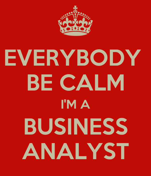 EVERYBODY  BE CALM I'M A BUSINESS ANALYST