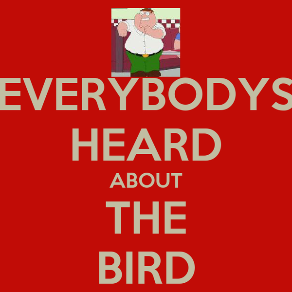 EVERYBODYS HEARD ABOUT THE BIRD