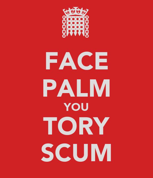 FACE PALM YOU TORY SCUM