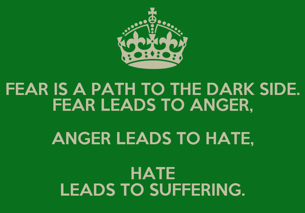 FEAR IS A PATH TO THE DARK SIDE. FEAR LEADS TO ANGER, ANGER LEADS TO HATE, HATE LEADS TO SUFFERING.