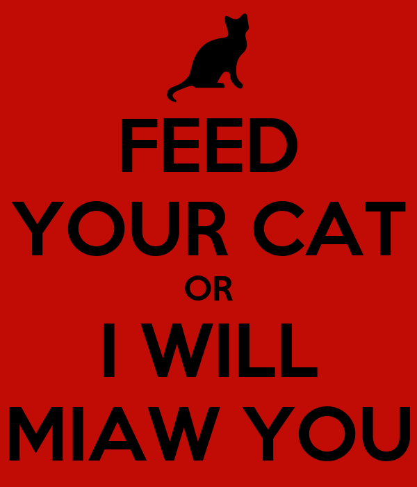 FEED YOUR CAT OR I WILL MIAW YOU