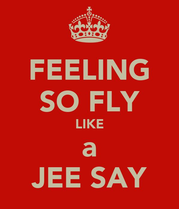 FEELING SO FLY LIKE a JEE SAY