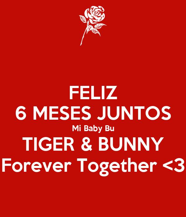 FELIZ 6 MESES JUNTOS Mi Baby Bu TIGER & BUNNY Forever Together <3