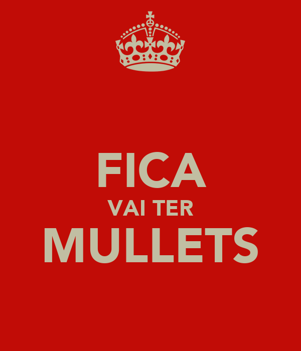 FICA VAI TER MULLETS