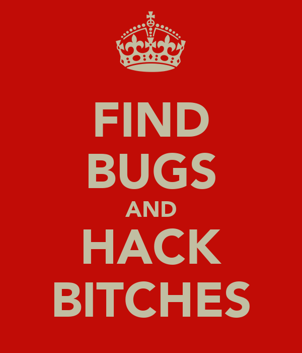 FIND BUGS AND HACK BITCHES