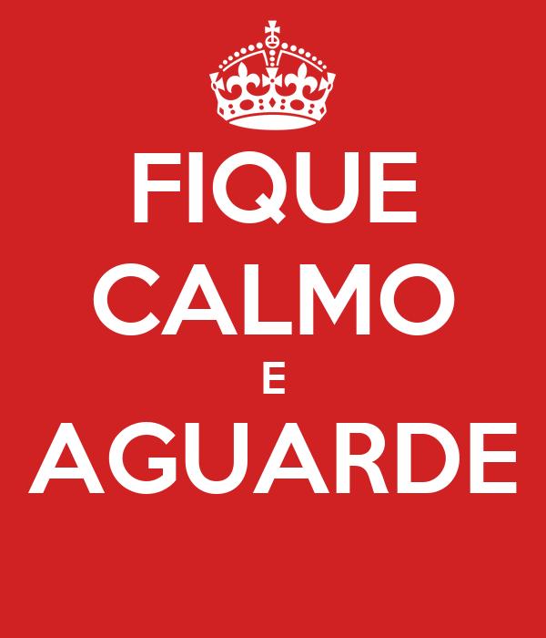 FIQUE CALMO E AGUARDE