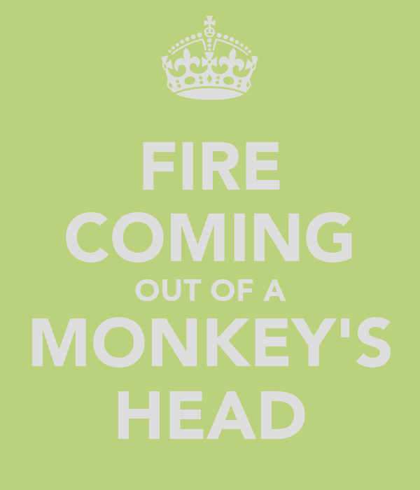 FIRE COMING OUT OF A MONKEY'S HEAD