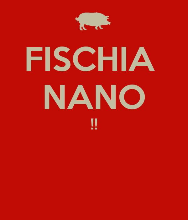 FISCHIA  NANO !!