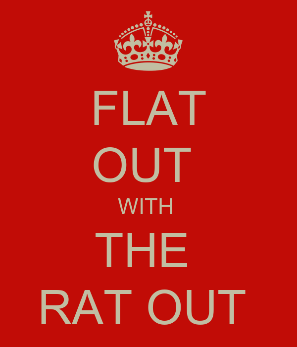 flat out with the rat out poster keep calm o matic