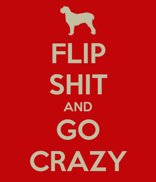 FLIP SHIT AND GO CRAZY