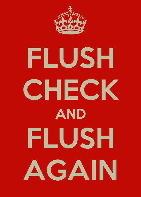 FLUSH CHECK AND FLUSH AGAIN