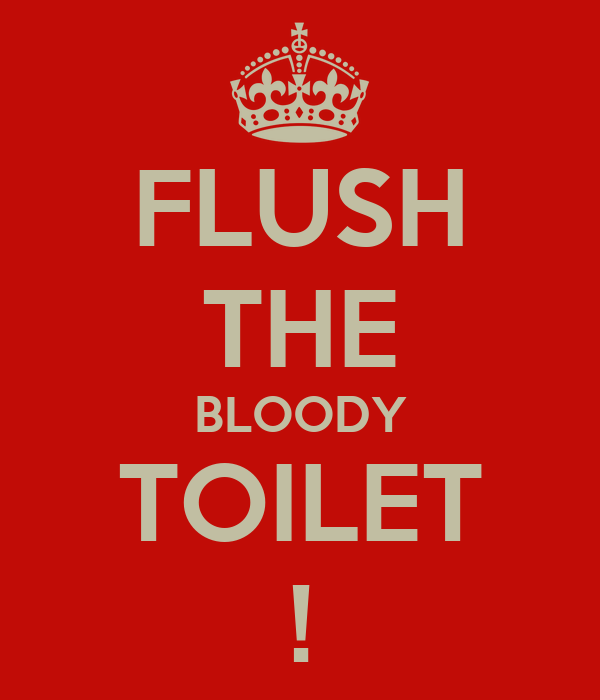 FLUSH THE BLOODY TOILET !