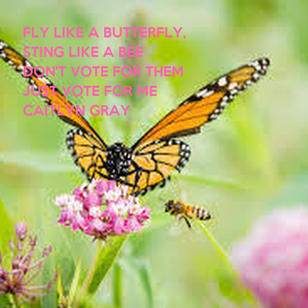 FLY LIKE A BUTTERFLY, STING LIKE A BEE DON'T VOTE FOR THEM  JUST VOTE FOR ME CAITLYN GRAY