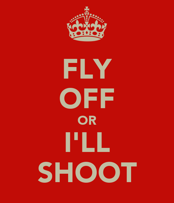 FLY OFF OR I'LL SHOOT