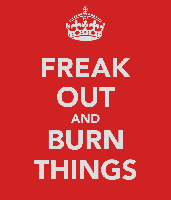 FREAK OUT AND BURN THINGS