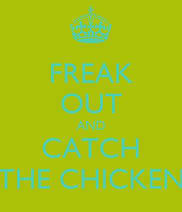 FREAK OUT AND CATCH THE CHICKEN