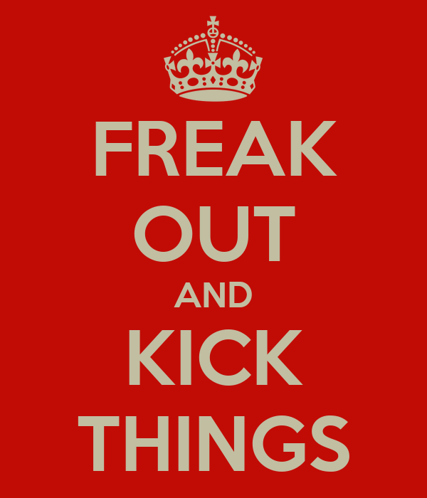 FREAK OUT AND KICK THINGS
