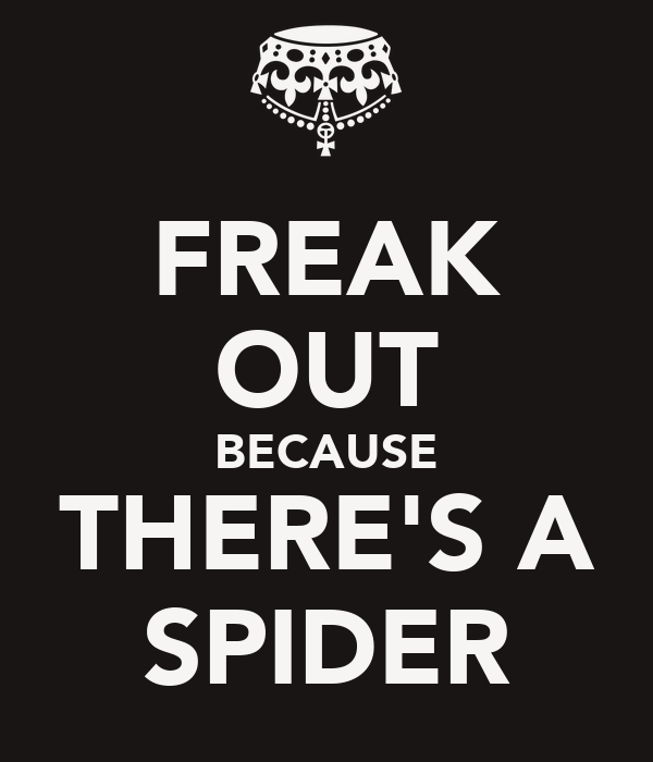 FREAK OUT BECAUSE THERE'S A SPIDER