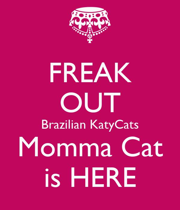 FREAK OUT Brazilian KatyCats Momma Cat is HERE