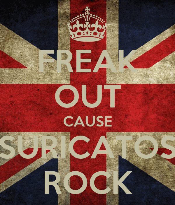 FREAK OUT CAUSE SURICATOS ROCK